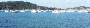 Pittwater boats